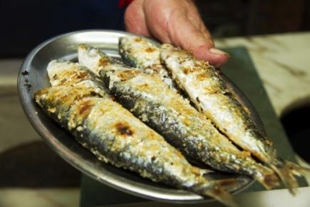 festival-da-sardinha-duarte-costa_etic-algarve